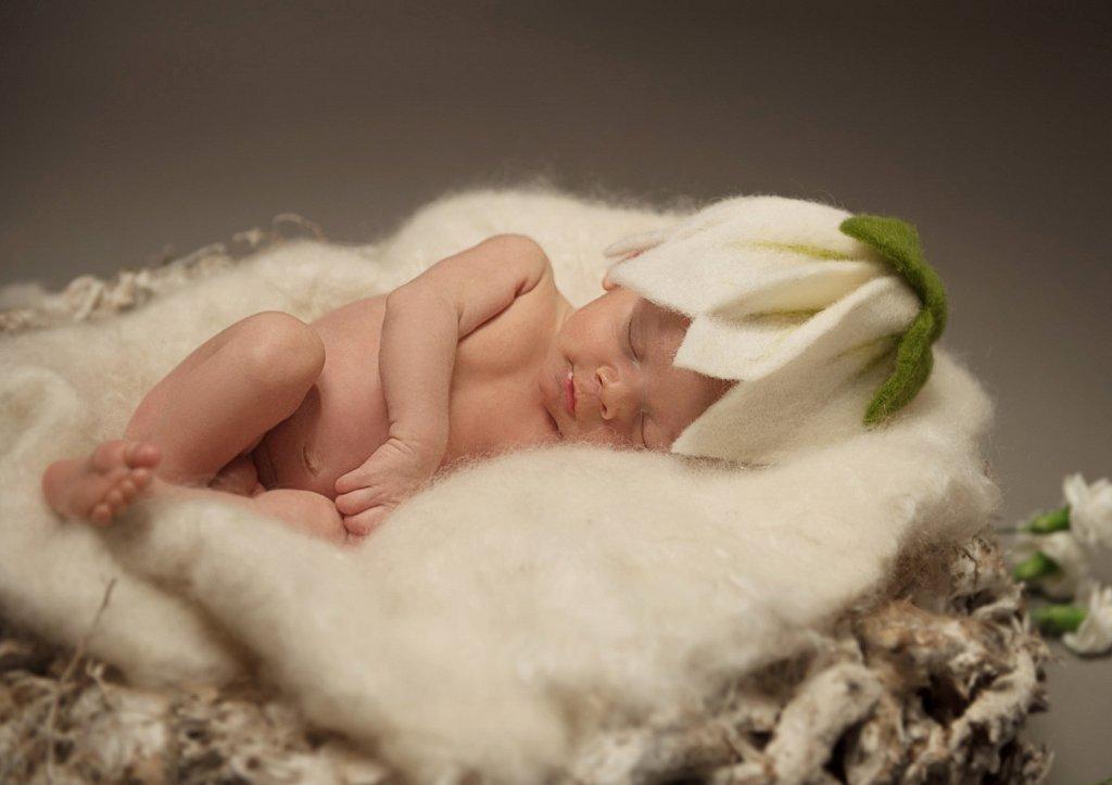 Newborn-0095.jpg