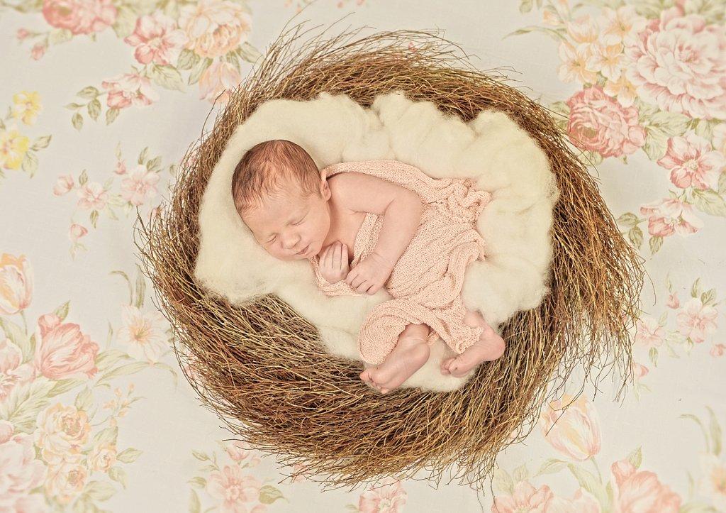 Newborn-0077.jpg
