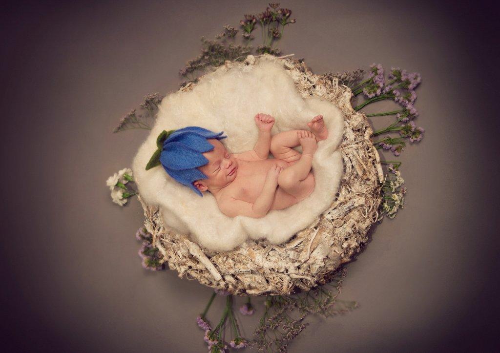 Newborn-0100.jpg